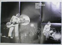 THE BLUE HEARTSポスタ写真